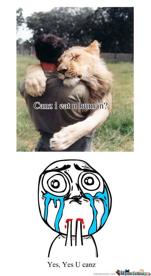 Funny Memes For Kids Appropriate : Cute memes best collection of funny pictures
