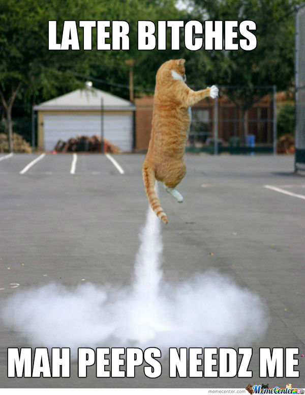 Dah Rocket-Cat
