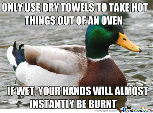 Daily Advice Brought You By... The Duck