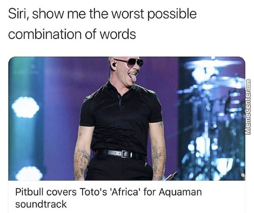 Pitbull Memes  Best Collection of Funny Pitbull Pictures