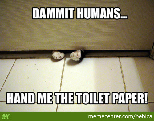 Dammit Humans ! Hurry Up !