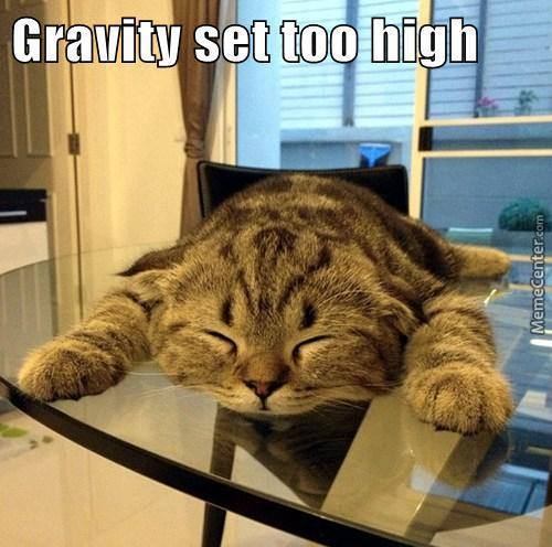 Damn Gravity! Hat's Exactly How I Feel About Gravity Sometimes Lol.