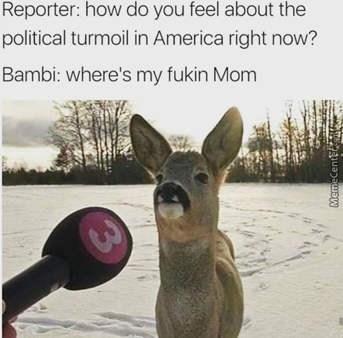 Damn It Bambi America Is In Turmoil Right Now!