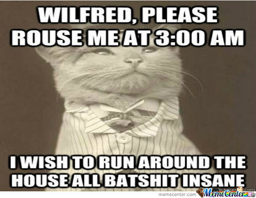 Damn You Wilfred!