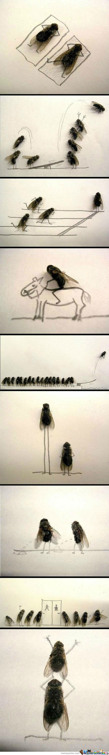 Dead Fly Art, Never Would Have Thought It's Give Me This Much Joy