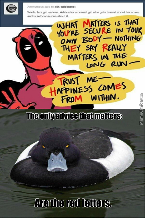 Deadpool And Revenge Duck Give Advice