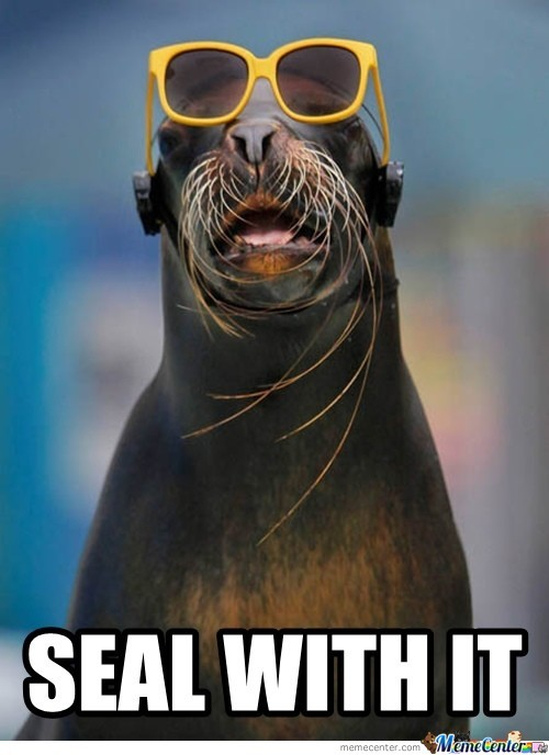 Deal With It - Seal Version