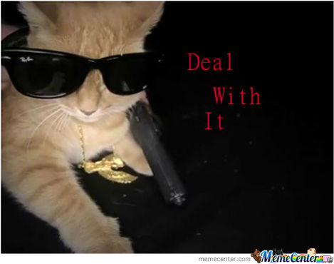 Deal With It Kitty