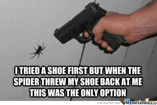 Dealing With A Spider Memecenter Style