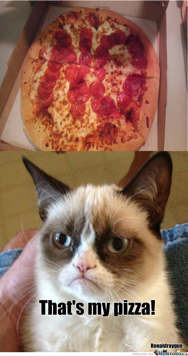 Delivery For Grumpy Cat