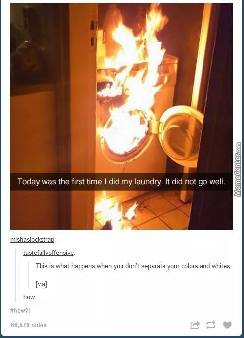 Did They Try To Wash A Dragon Or What? .-.