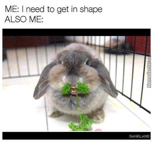 Dieting Memes Best Collection Of Funny Dieting Pictures
