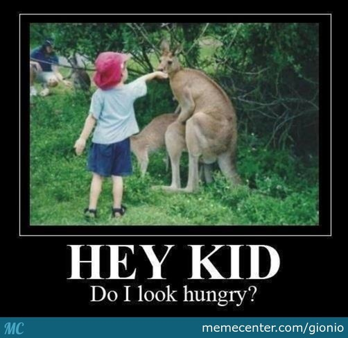 Do I Look Hungry To You?