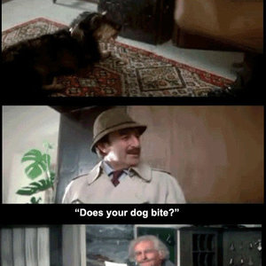 does your dog bite_fb_6149227 does your dog bite? by haruka_kun meme center,Does Your Dog Bite Meme