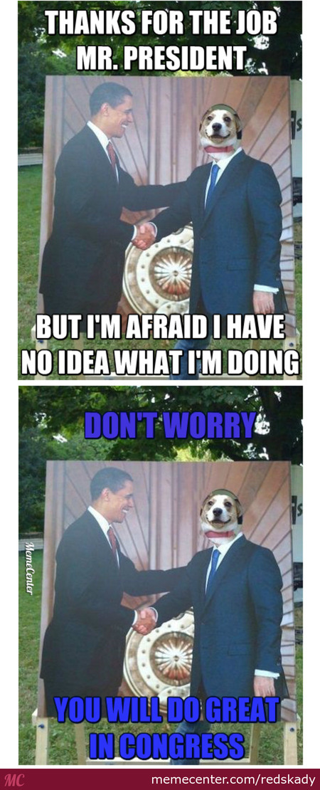 Dog Gets A Government Job