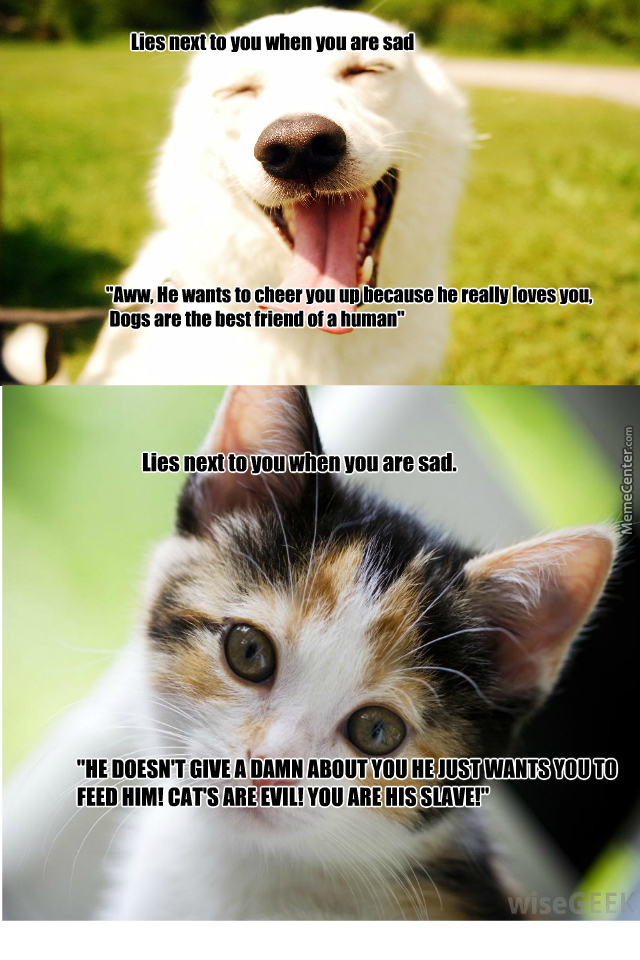 Dog Lovers Shouldn't Be So Hypocritical