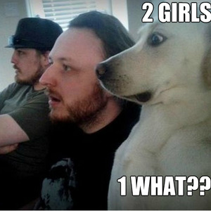Dog Reaction Face Two Girls One You Know The Rest By Didelidan