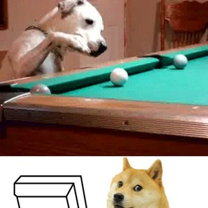 Doge Is Very Much Impressed by Ifreet - Meme Center