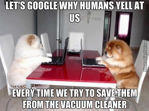 Dogs Don't Understand Humans