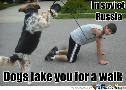 Dogs In Soviet Russia