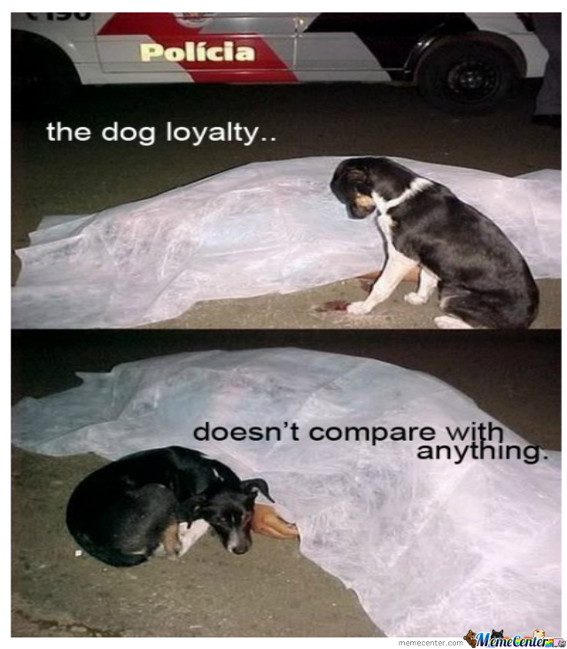 Dogs Loyalty by pinyaman - Meme Center