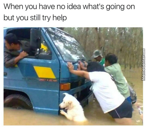 Doing What A Good Boy Does