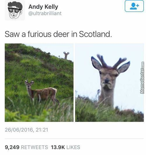 Don't Be So Shocked Its Scotland