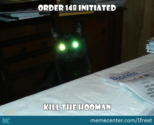 Don't Get Close To Them When They Glow The Eyes
