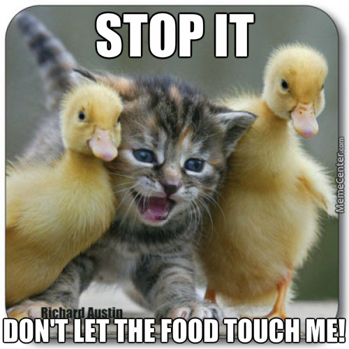 Don't Let The Food Touch Me