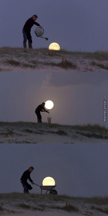 Don't Mind Me, I'm Just Planting The Moon