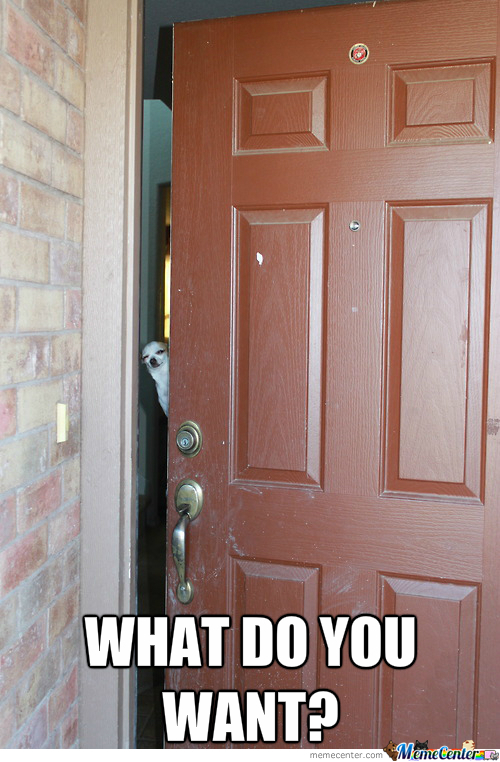 Don't You Just Hate It When People Knock At Your Door In The