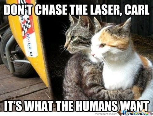 Don´t Chase The Laser
