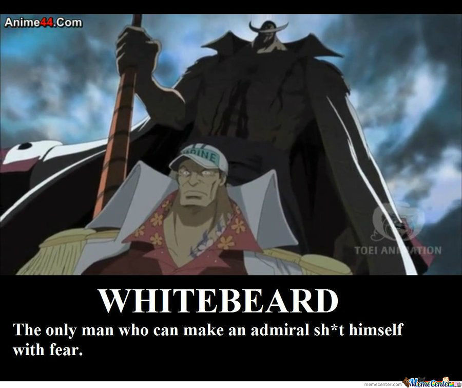 Don´t Fucking Dare To Mess With Whitbeard !!!!!!!!!!