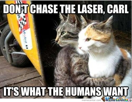 dont chase the laser_c_328539 laser sword memes best collection of funny laser sword pictures,Laser Pointers Funny Airplane Meme