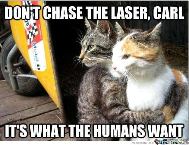 Dont Chase The Laser