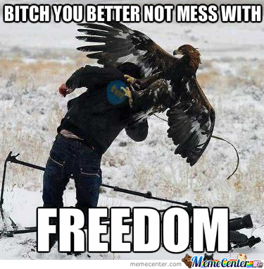 Dont Mess With Eagles, Symbols Of Freeeeeedom
