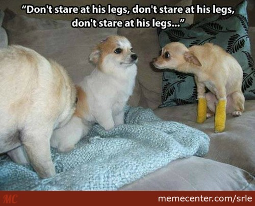Don`t Stare At His Legs