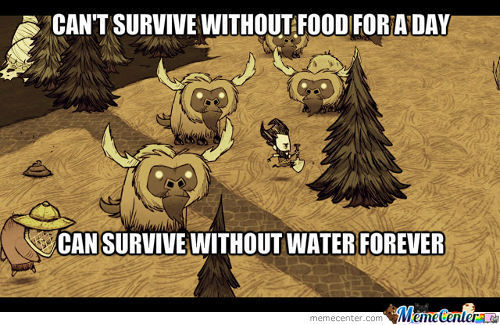 Don't Starve Logic