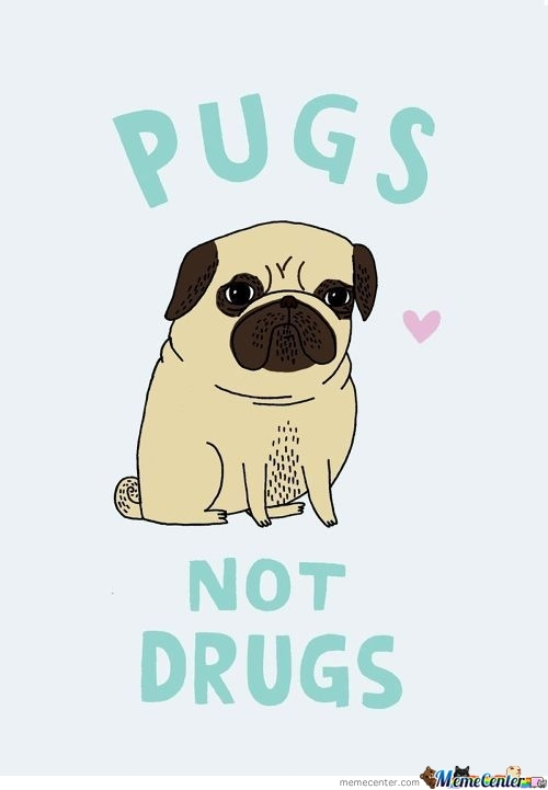 Drugs Not Pugs