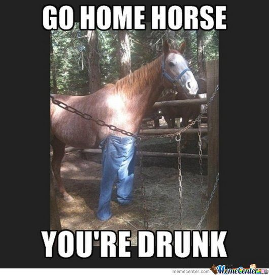 Drunk Memes Best Collection Of Funny Drunk Pictures