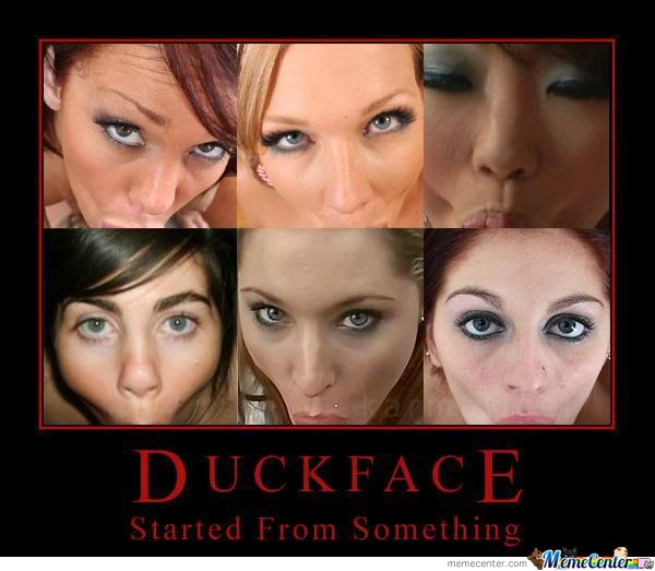 face meme Duck