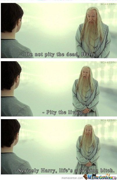 Dumbledore The Wise