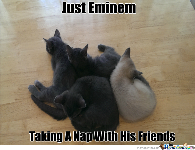 Eminem And His Pals