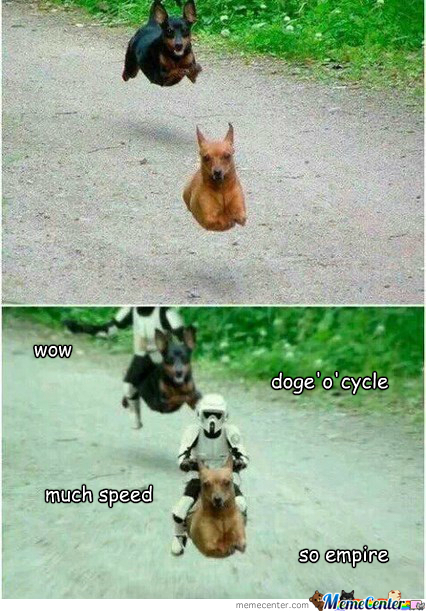 Episode I: Doge Menace