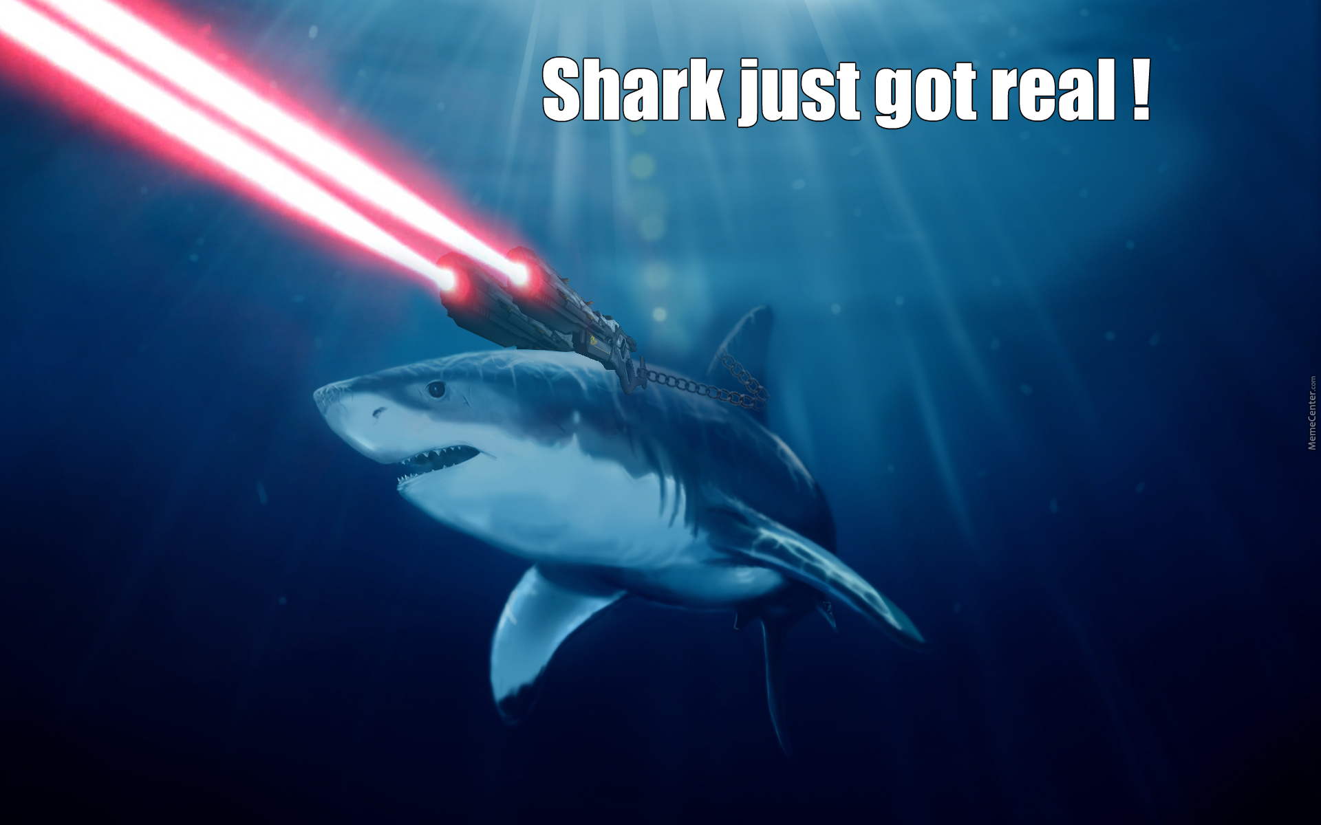 Equip Your Shark With Lasers By Souv Meme Center