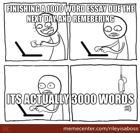 Next day essay