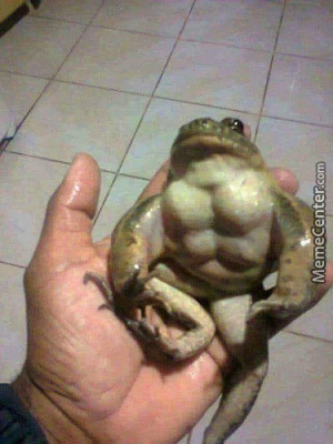 Even Frog Is Muscular And You There With That Laziness To Do Exercises