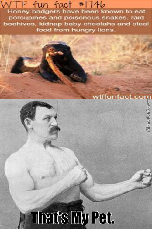 Even Overly Manly Man Has A Pet.