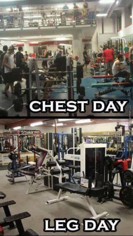 Every Gym In The World