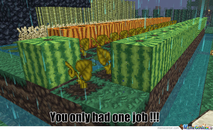 Every Time I Farm In Minecraft ....